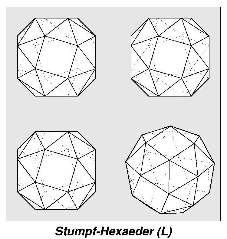 Archimedesche Körper / Ansicht / Stumpf-Hexaeder